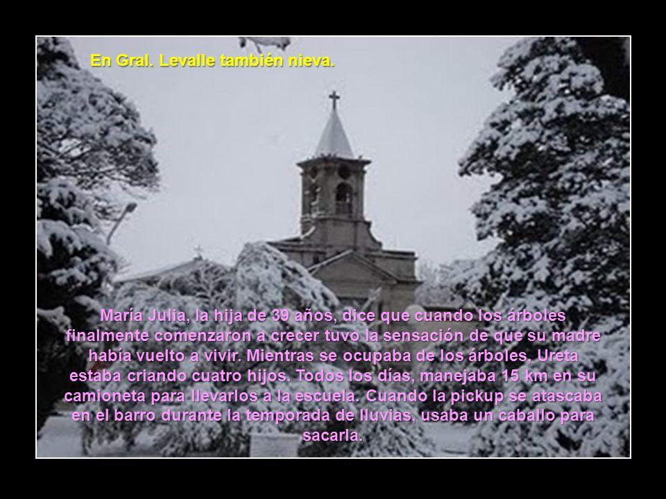 En Gral. Levalle también nieva.