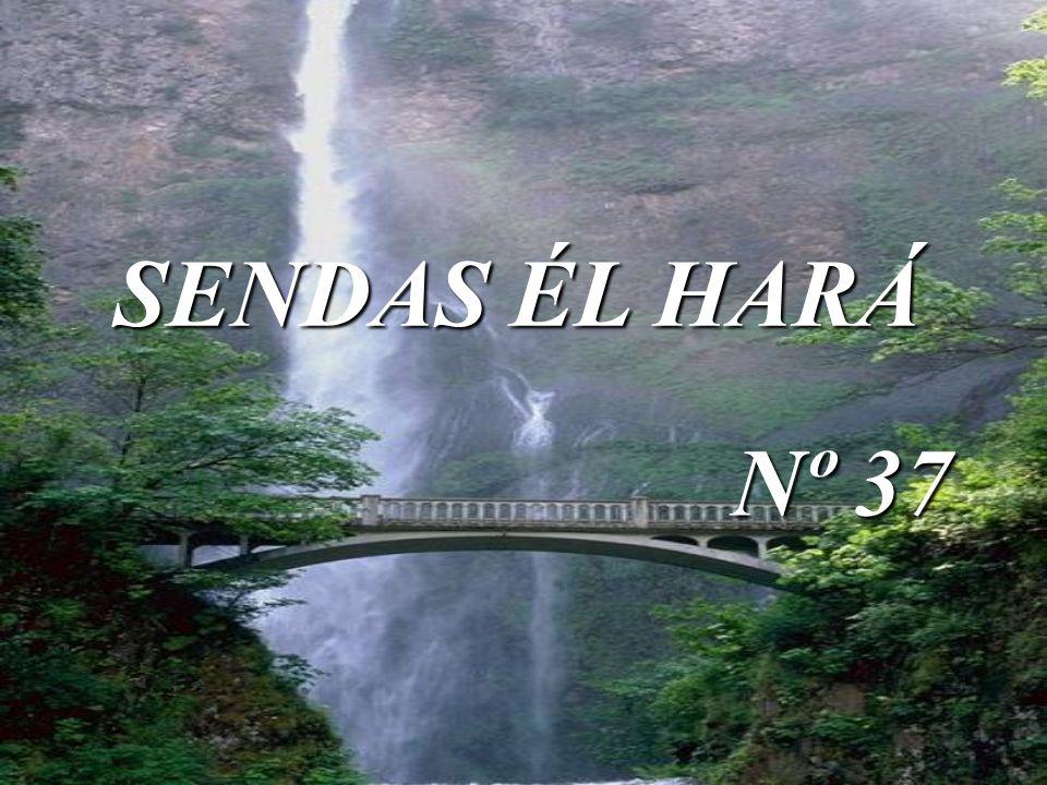 SENDAS ÉL HARÁ Nº 37