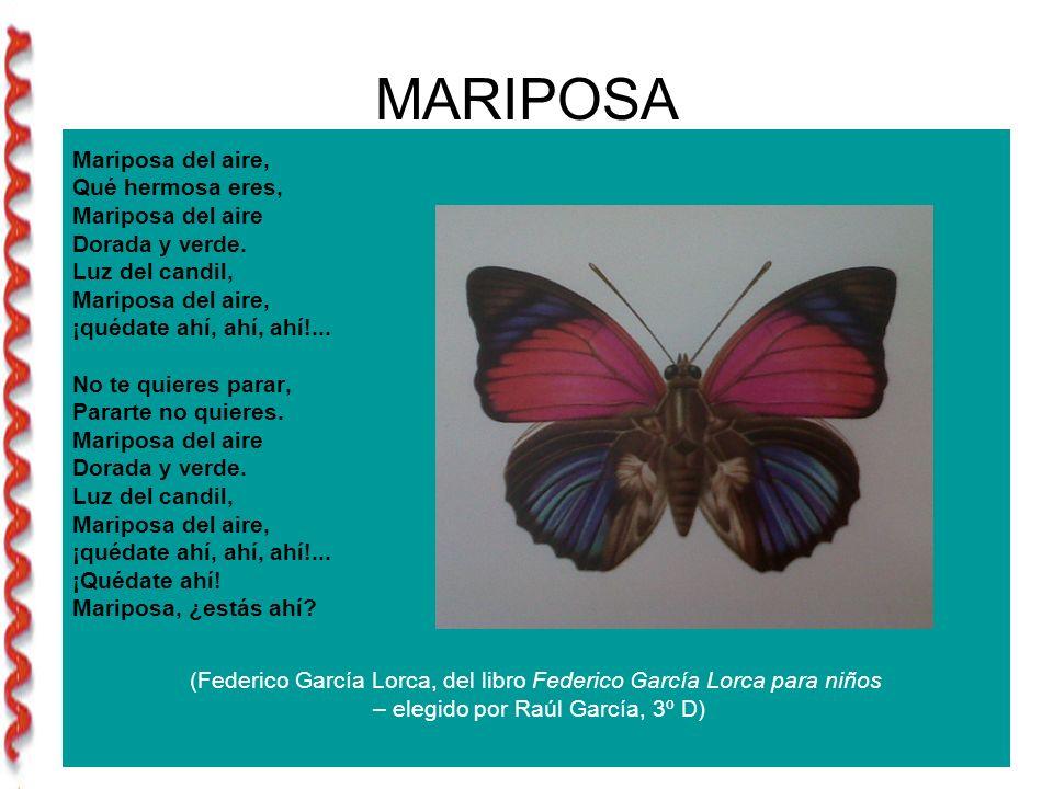 MARIPOSA Mariposa del aire, Qué hermosa eres, Mariposa del aire