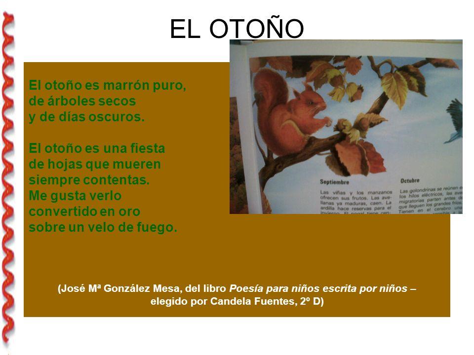 elegido por Candela Fuentes, 2º D)