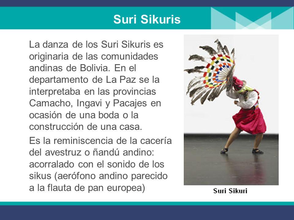 Suri Sikuris