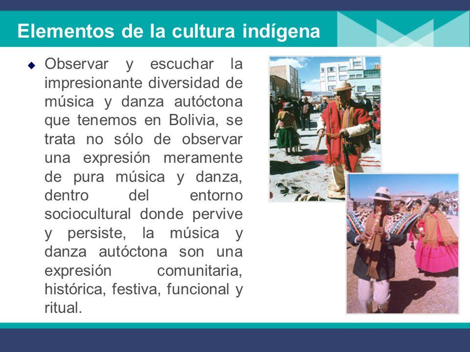 Elementos de la cultura indígena
