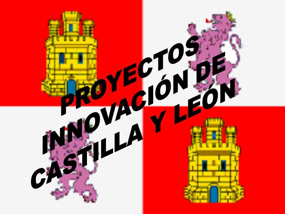 PROYECTOS INNOVACIÓN DE CASTILLA Y LEÓN