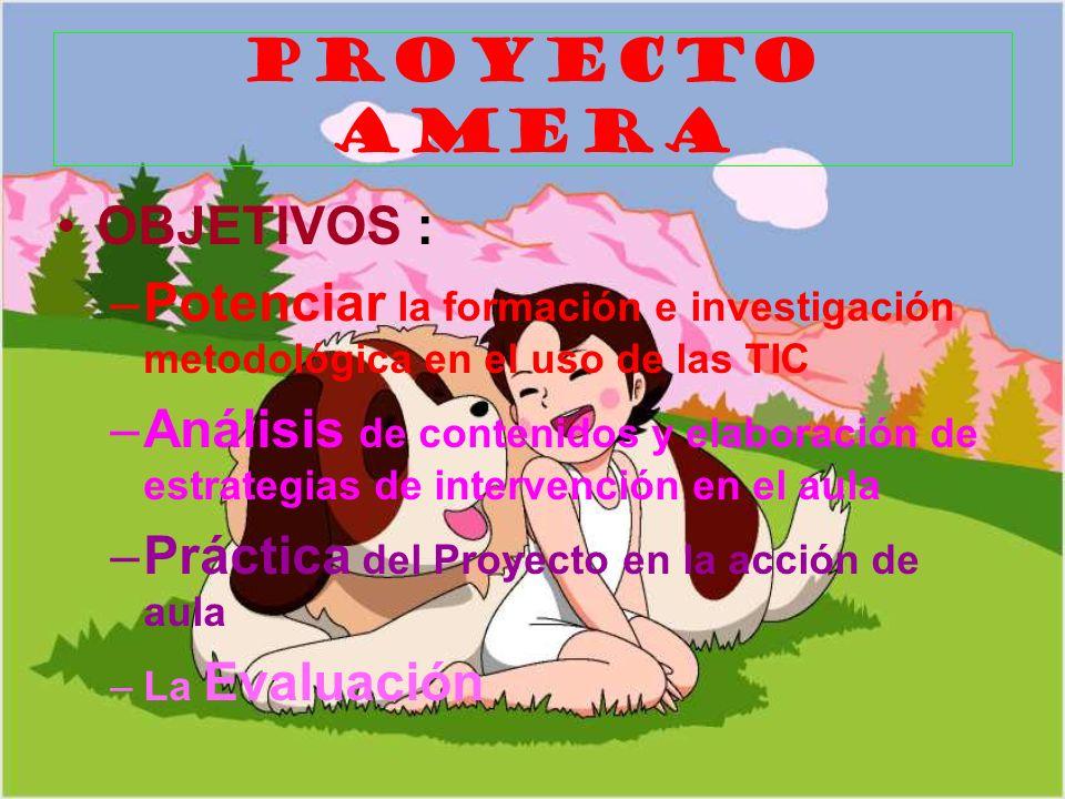 PROYECTO AMERA OBJETIVOS :