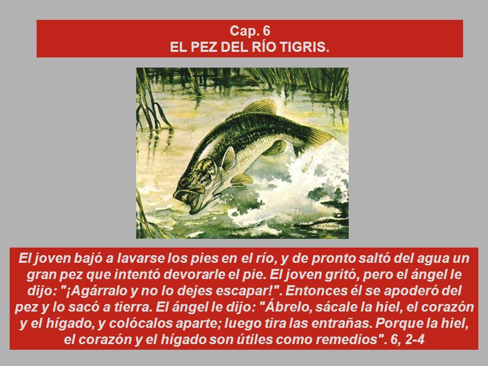 Cap. 6 EL PEZ DEL RÍO TIGRIS.