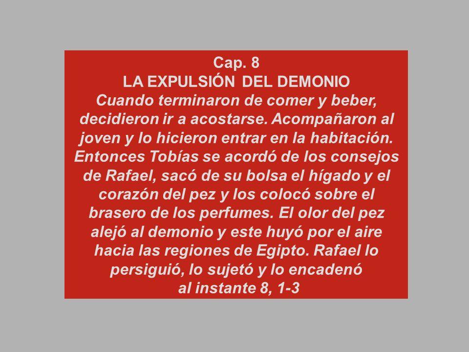 Cap. 8
