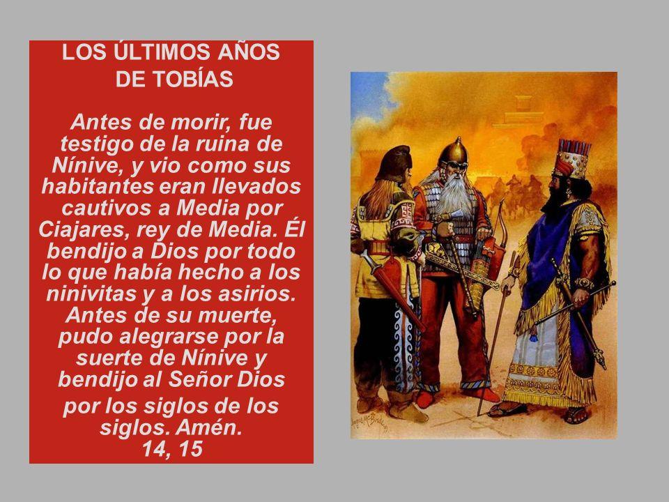 por los siglos de los siglos. Amén. 14, 15