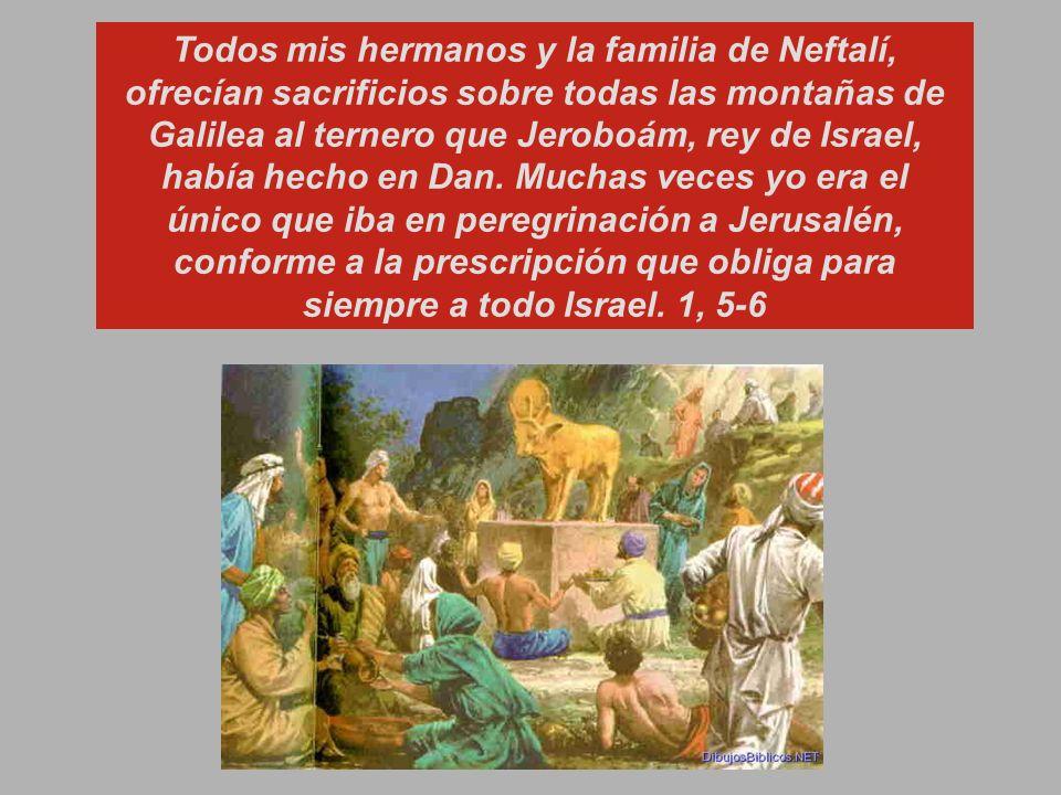 Todos mis hermanos y la familia de Neftalí, ofrecían sacrificios sobre todas las montañas de Galilea al ternero que Jeroboám, rey de Israel, había hecho en Dan. Muchas veces yo era el