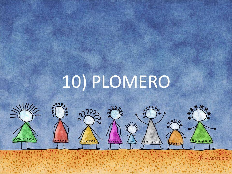 10) PLOMERO
