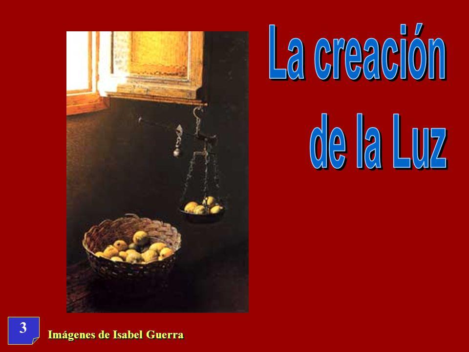 La creación de la Luz 3 Imágenes de Isabel Guerra