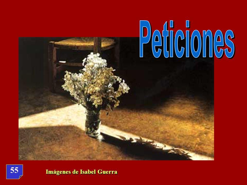 Peticiones 55 Imágenes de Isabel Guerra
