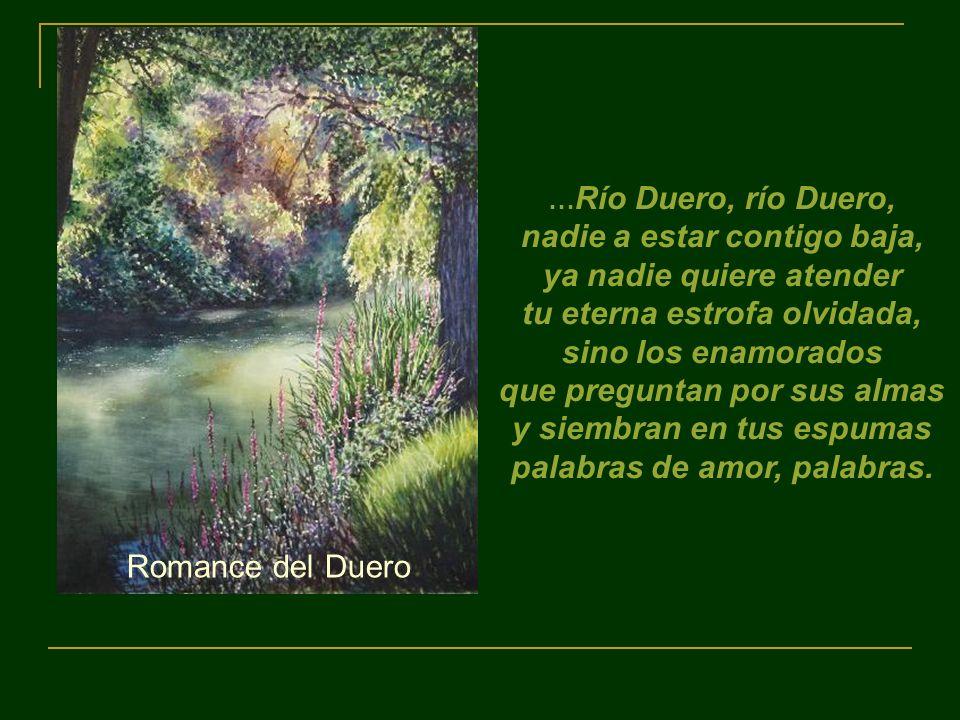 …Río Duero, río Duero, nadie a estar contigo baja, ya nadie quiere atender tu eterna estrofa olvidada,