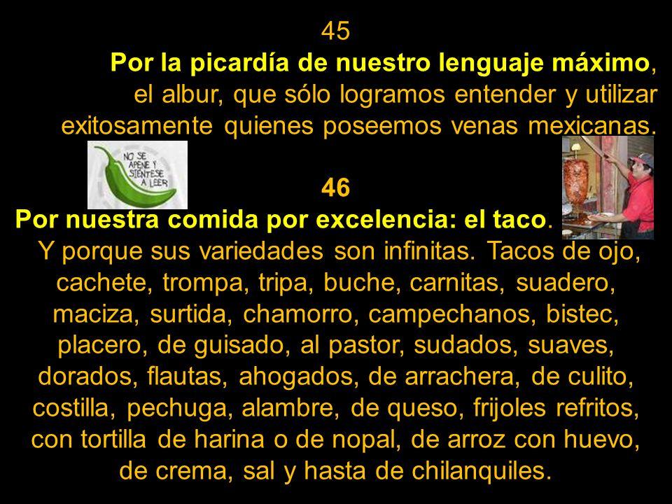 45Por la picardía de nuestro lenguaje máximo, el albur, que sólo logramos entender y utilizar exitosamente quienes poseemos venas mexicanas.
