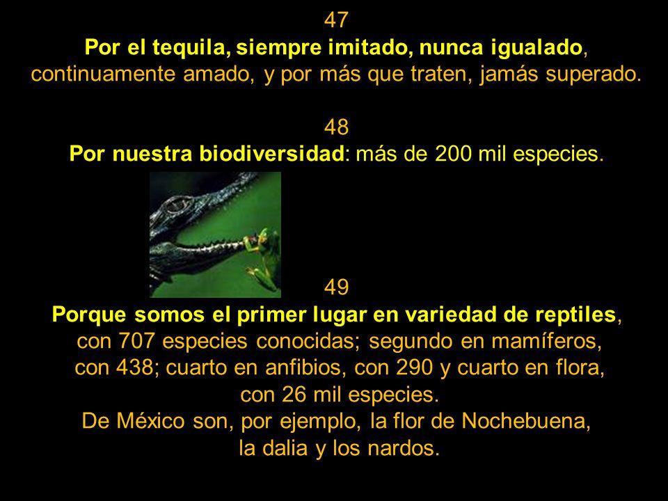 Por nuestra biodiversidad: más de 200 mil especies.