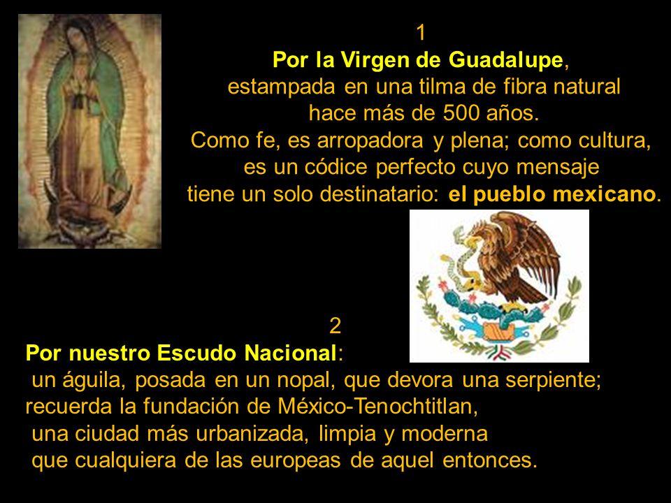 Por la Virgen de Guadalupe, estampada en una tilma de fibra natural