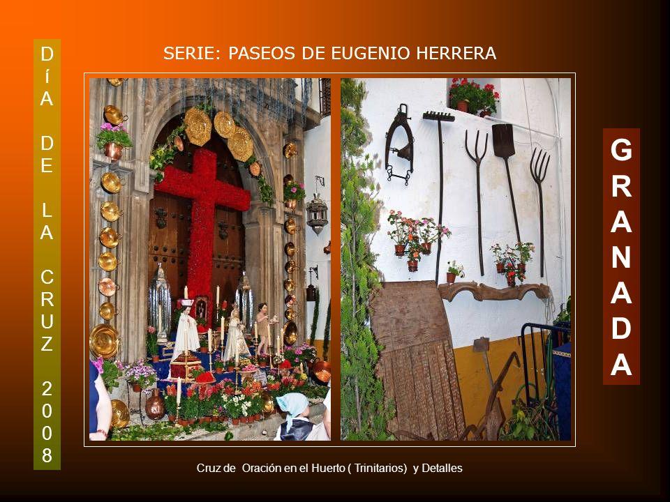 G R A N D D í A E L C R U Z 2 8 SERIE: PASEOS DE EUGENIO HERRERA