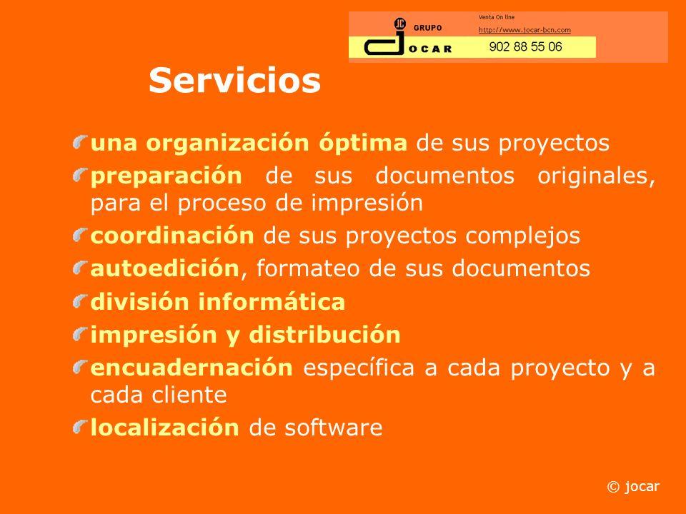 Servicios una organización óptima de sus proyectos