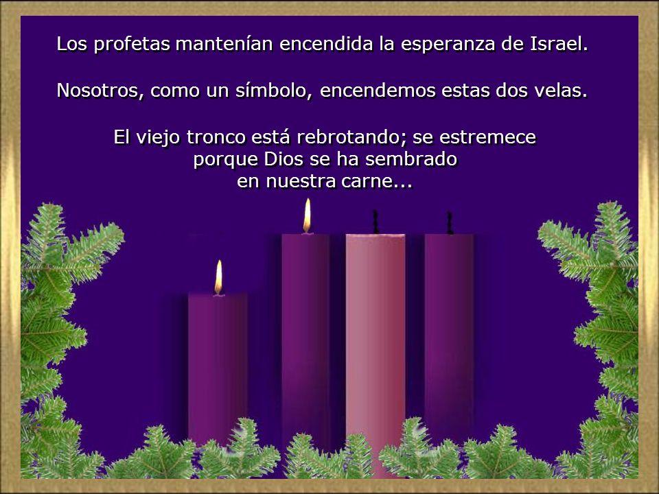 Los profetas mantenían encendida la esperanza de Israel.