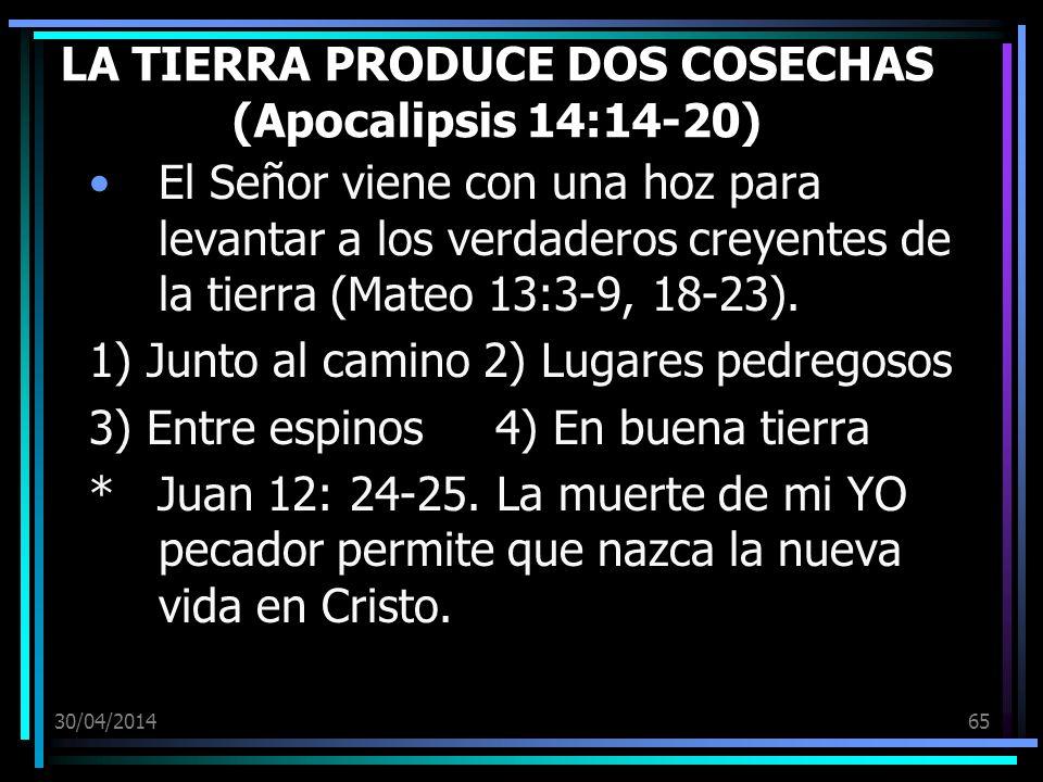 LA TIERRA PRODUCE DOS COSECHAS (Apocalipsis 14:14-20)