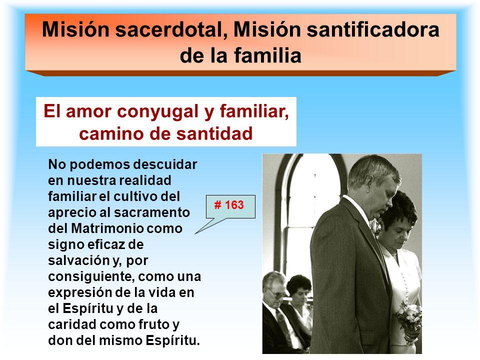 Misión sacerdotal, Misión santificadora de la familia