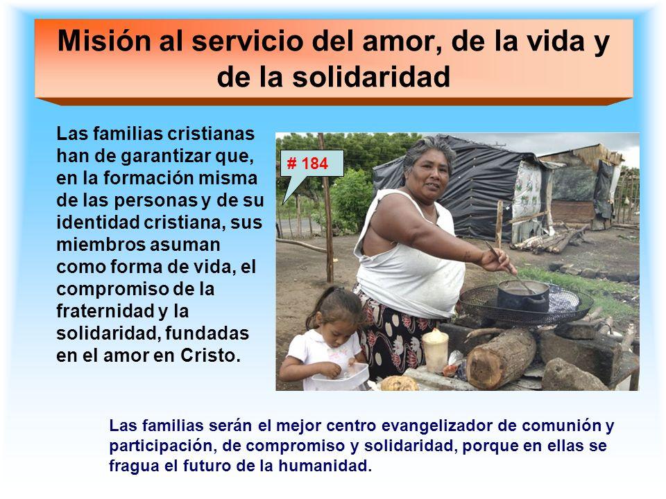 Misión al servicio del amor, de la vida y de la solidaridad