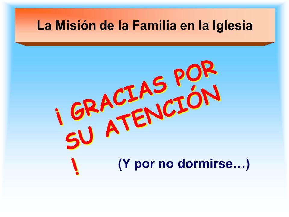 La Misión de la Familia en la Iglesia