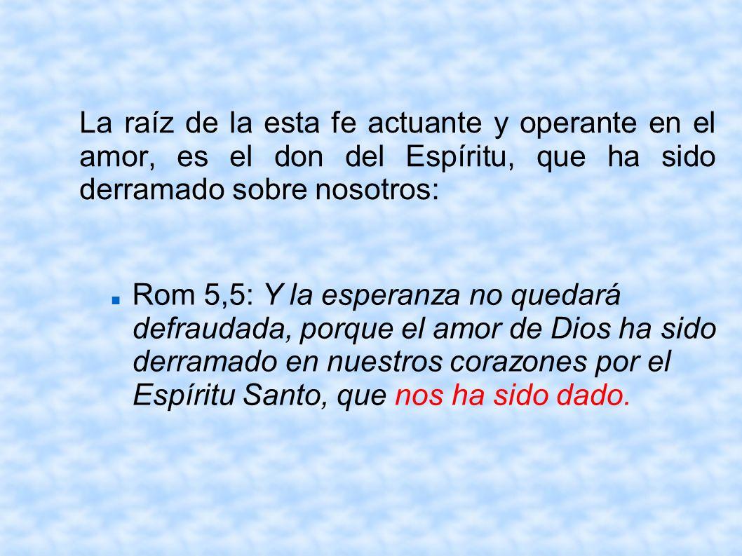 La raíz de la esta fe actuante y operante en el amor, es el don del Espíritu, que ha sido derramado sobre nosotros: