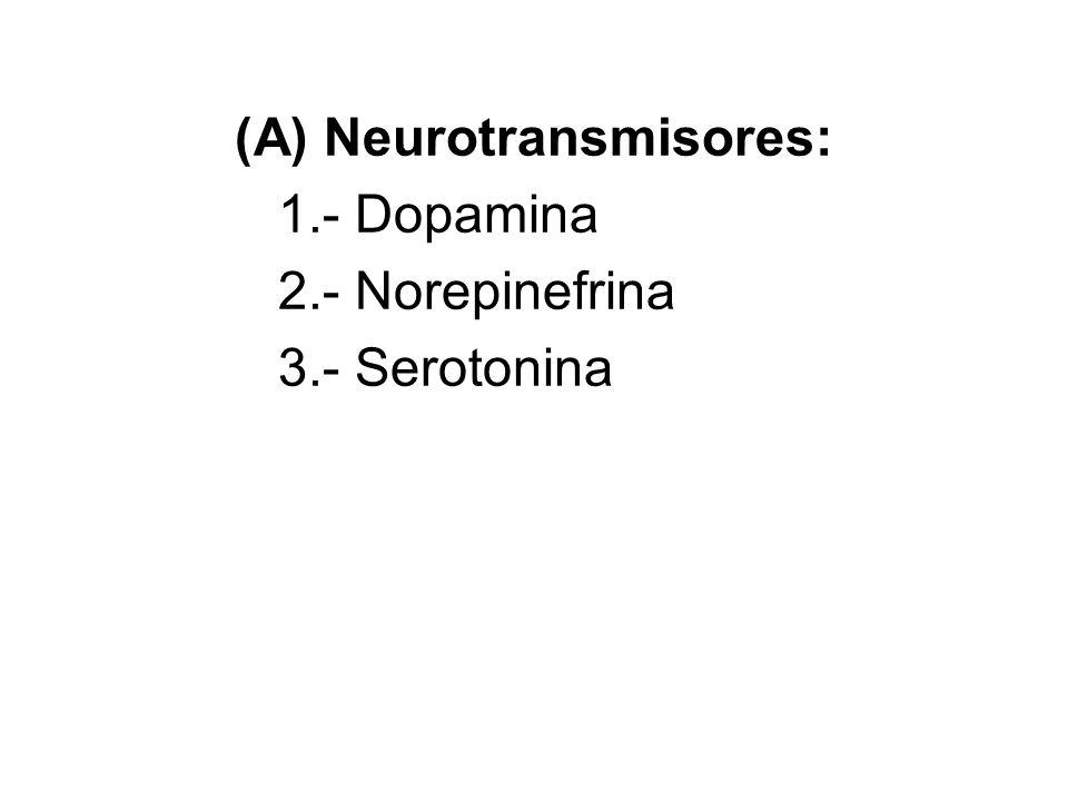 Neurotransmisores: 1.- Dopamina 2.- Norepinefrina 3.- Serotonina