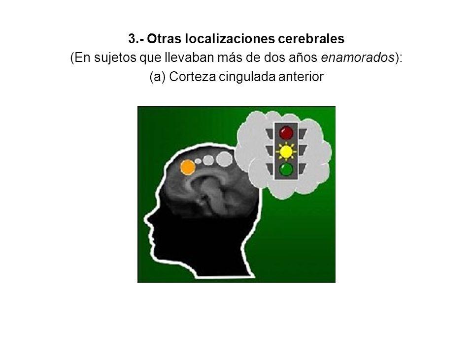 3.- Otras localizaciones cerebrales