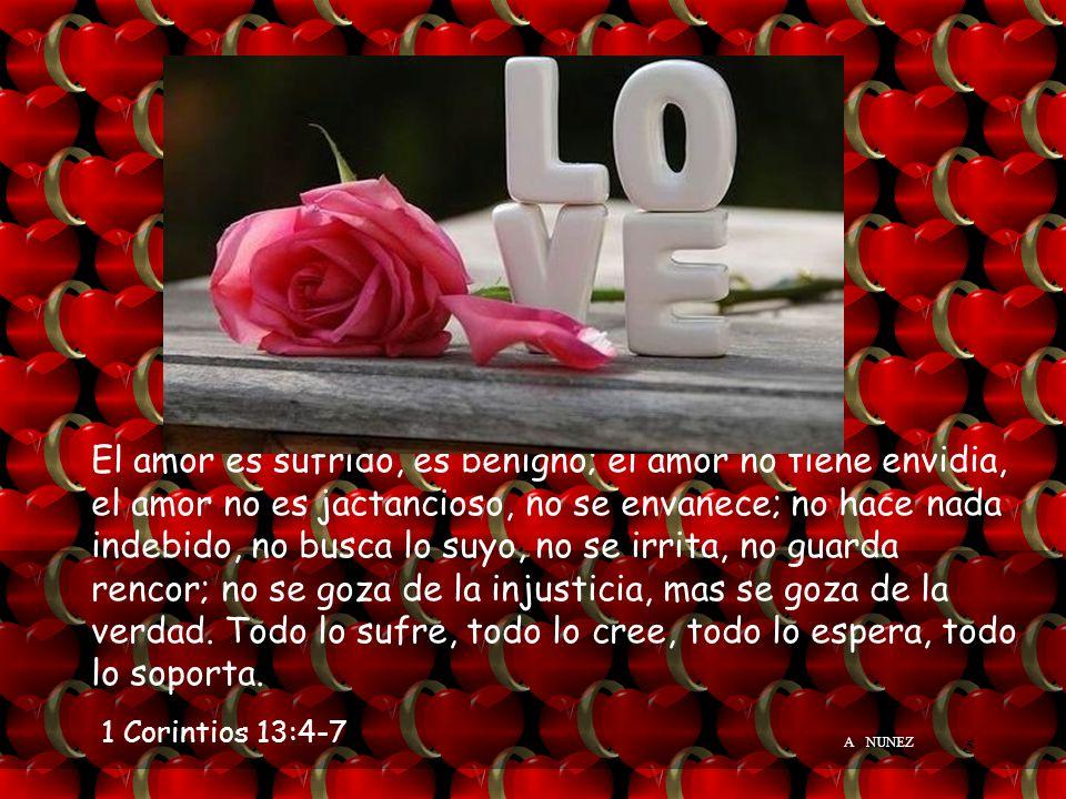 El amor es sufrido, es benigno; el amor no tiene envidia, el amor no es jactancioso, no se envanece; no hace nada indebido, no busca lo suyo, no se irrita, no guarda rencor; no se goza de la injusticia, mas se goza de la verdad. Todo lo sufre, todo lo cree, todo lo espera, todo lo soporta.