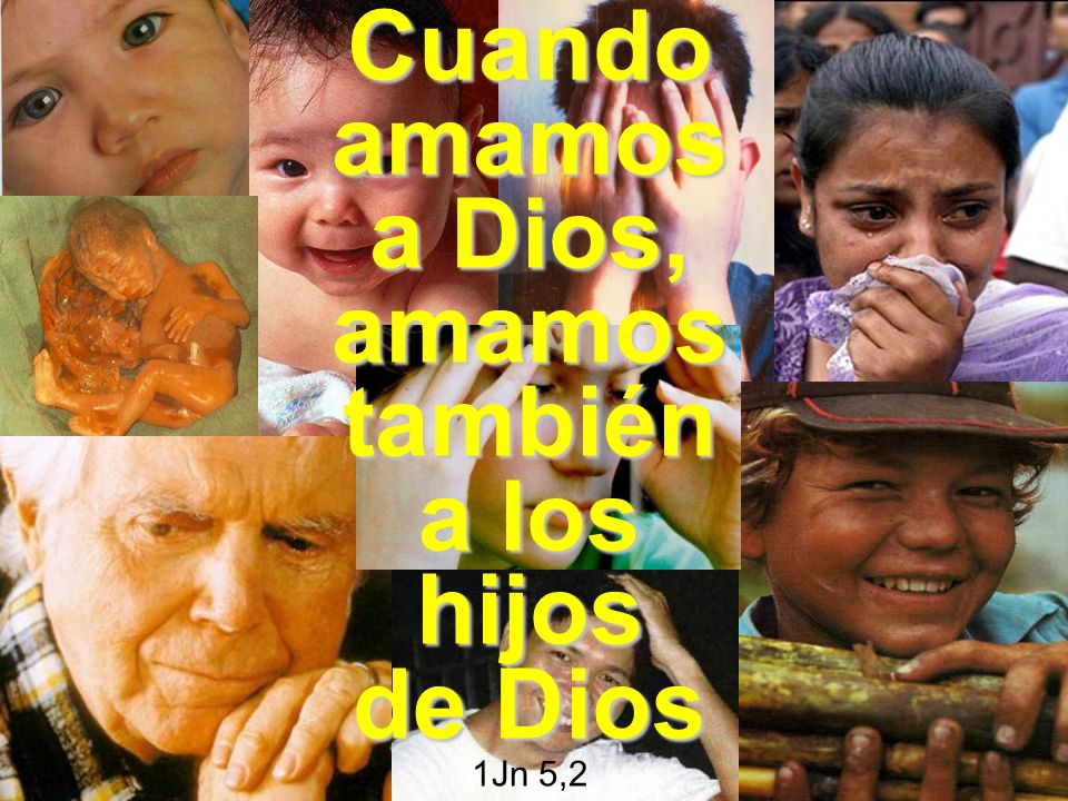Cuando amamos a Dios, amamos también a los hijos de Dios 1Jn 5,2