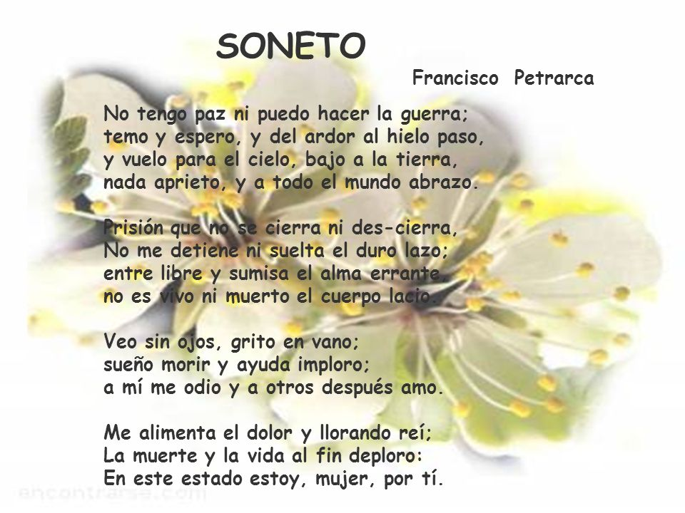 SONETO Francisco Petrarca