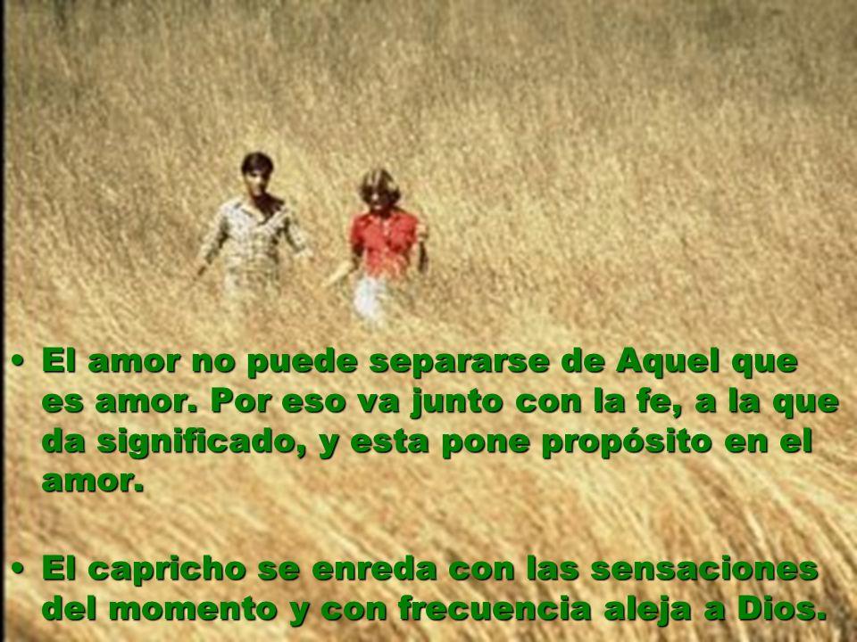 El amor no puede separarse de Aquel que es amor