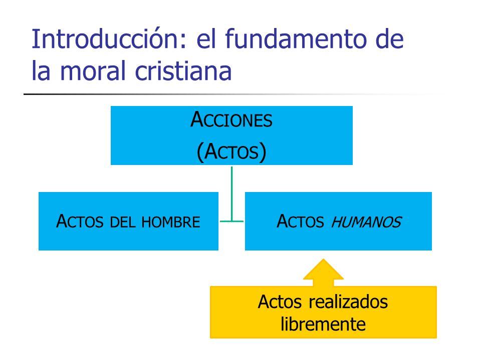 Introducción: el fundamento de la moral cristiana