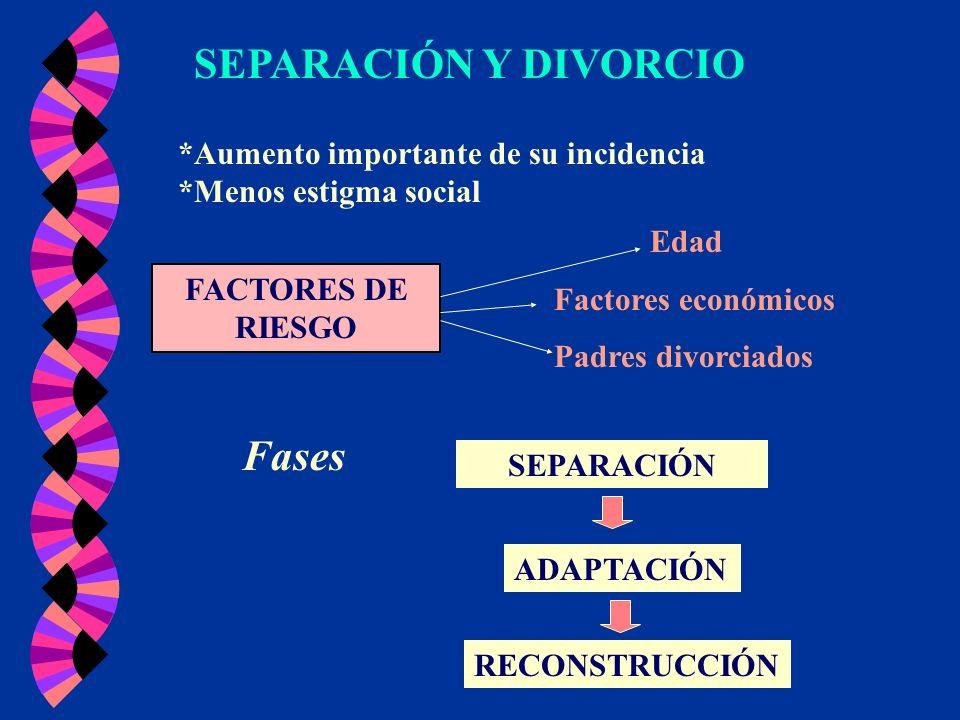 SEPARACIÓN Y DIVORCIO Fases