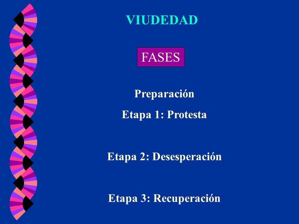 VIUDEDAD FASES Preparación Etapa 1: Protesta Etapa 2: Desesperación