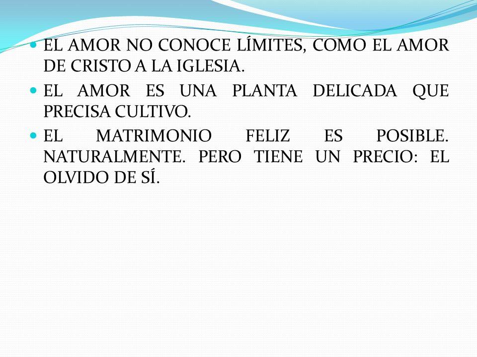 EL AMOR NO CONOCE LÍMITES, COMO EL AMOR DE CRISTO A LA IGLESIA.