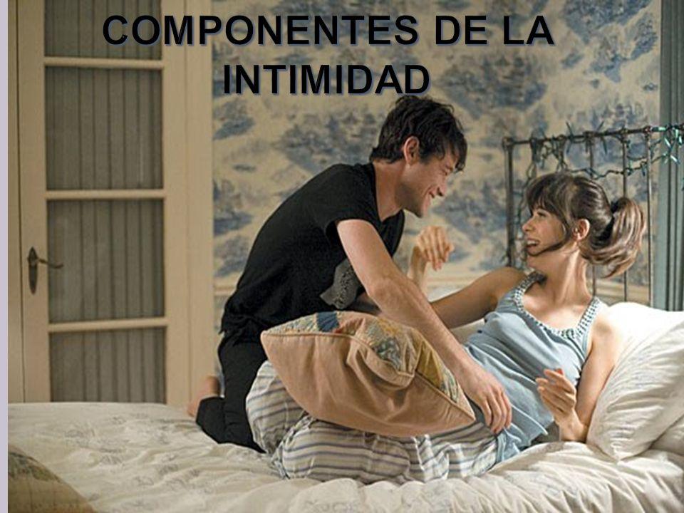 COMPONENTES DE LA INTIMIDAD