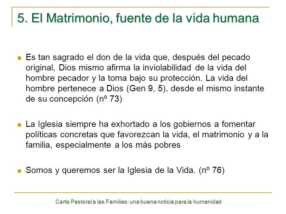 5. El Matrimonio, fuente de la vida humana