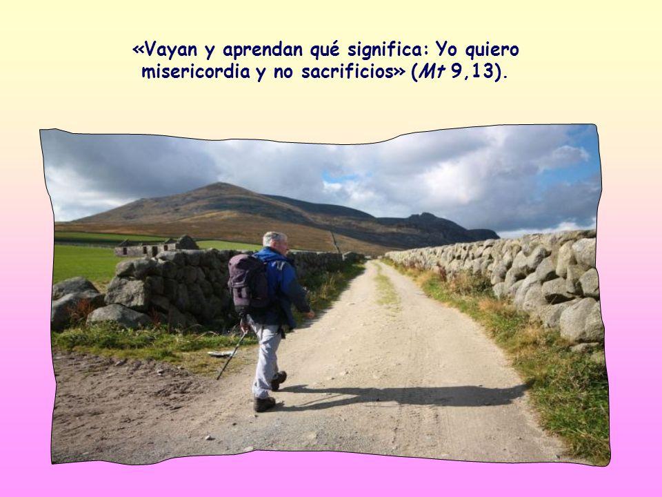 «Vayan y aprendan qué significa: Yo quiero misericordia y no sacrificios» (Mt 9,13).
