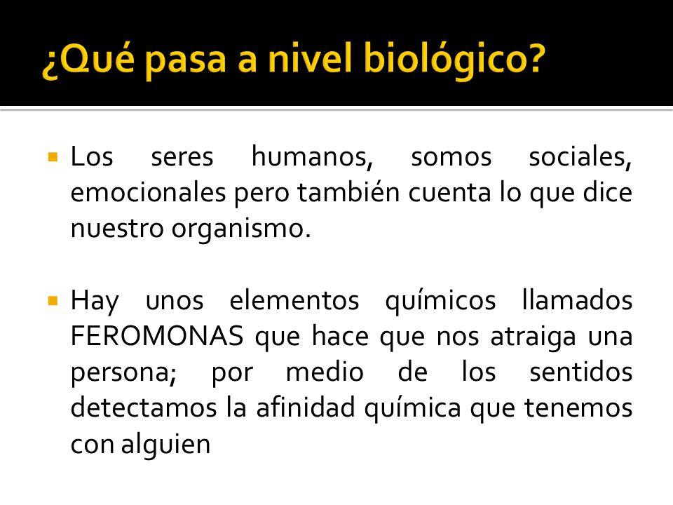 ¿Qué pasa a nivel biológico