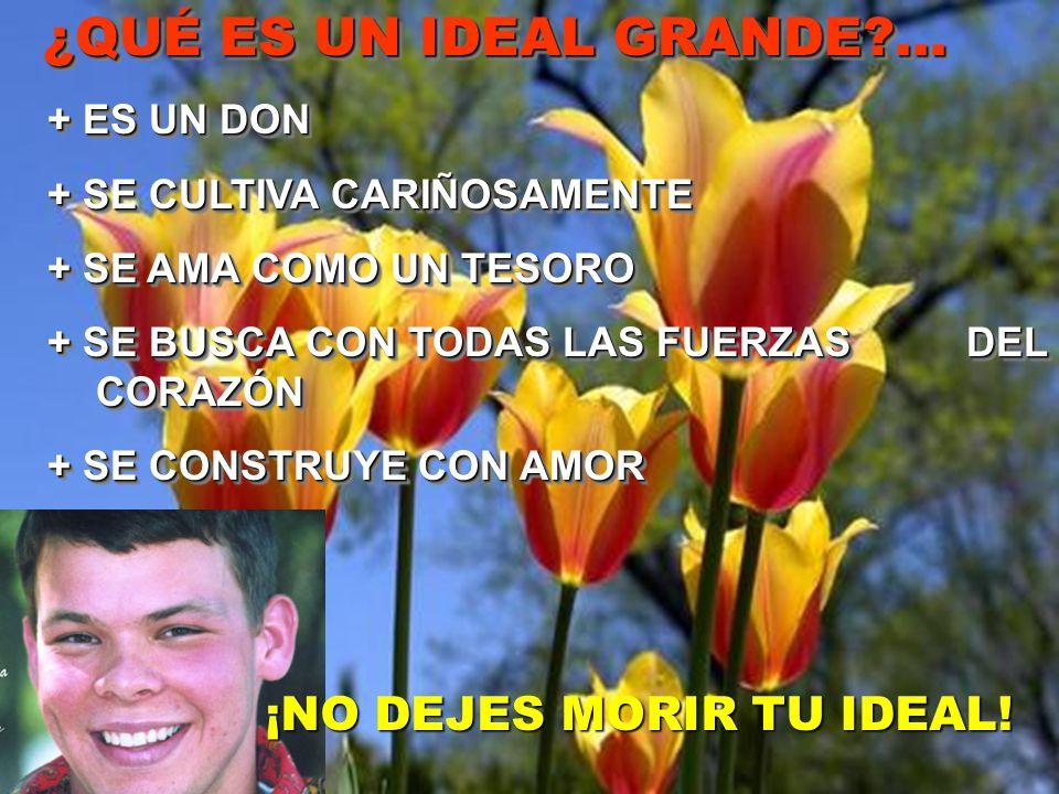 ¿QUÉ ES UN IDEAL GRANDE ... ¡NO DEJES MORIR TU IDEAL! + ES UN DON