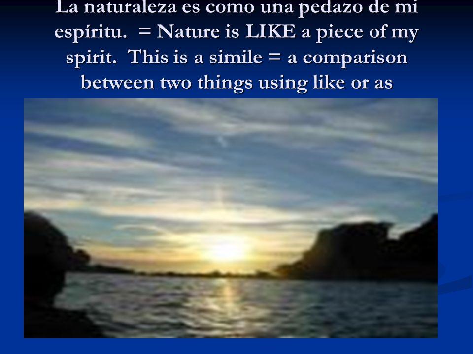 La naturaleza es como una pedazo de mi espíritu
