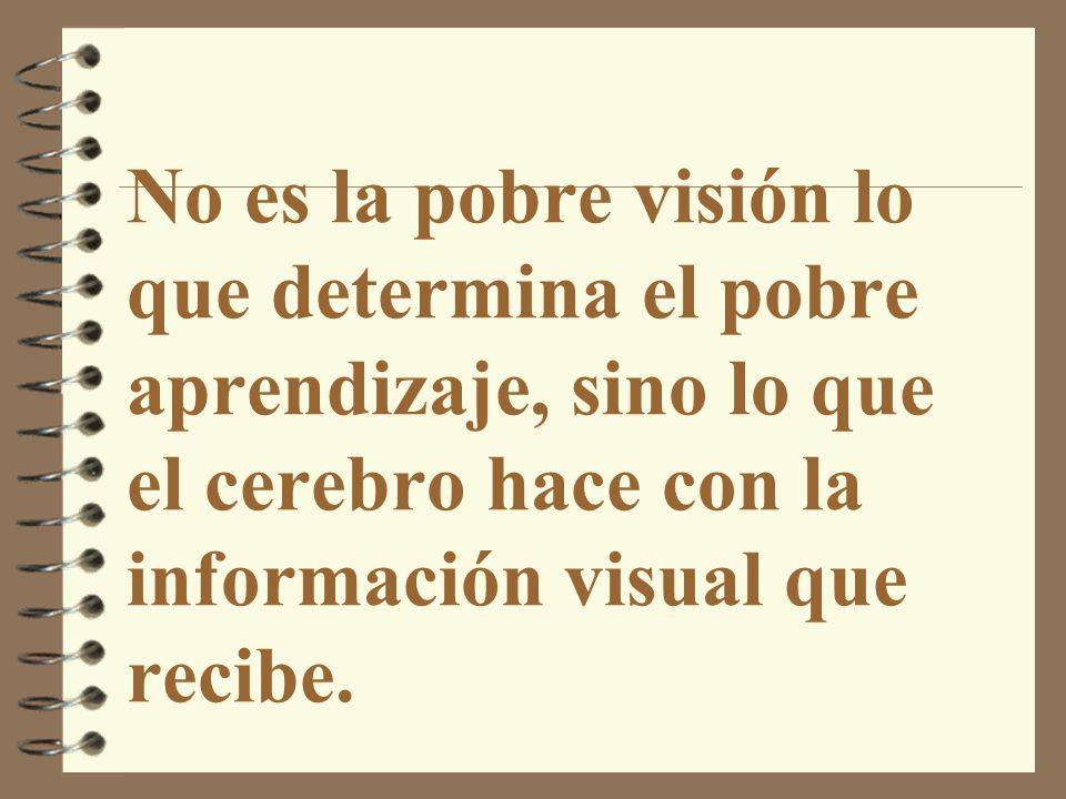 No es la pobre visión lo que determina el pobre aprendizaje, sino lo que el cerebro hace con la información visual que recibe.