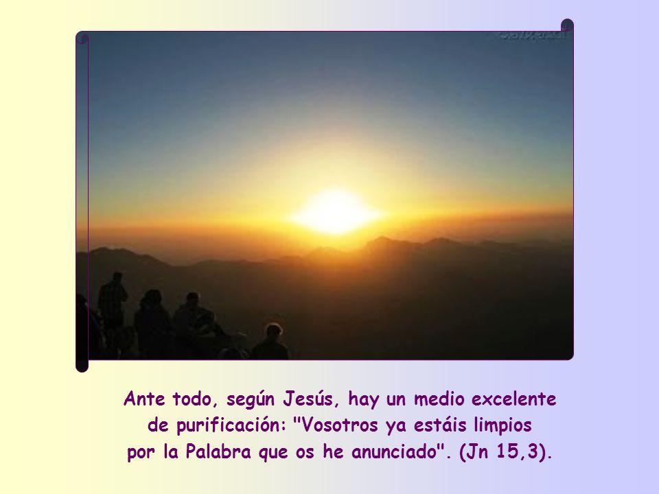Ante todo, según Jesús, hay un medio excelente de purificación: Vosotros ya estáis limpios por la Palabra que os he anunciado .