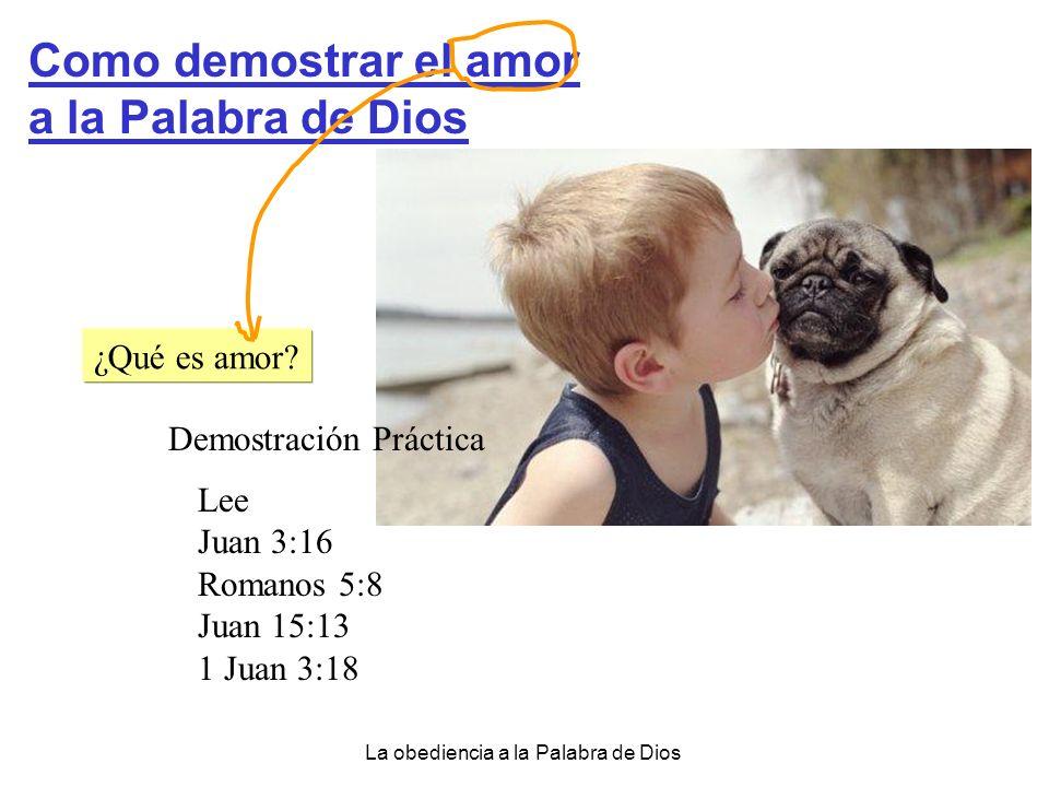 Como demostrar el amor a la Palabra de Dios ¿Qué es amor