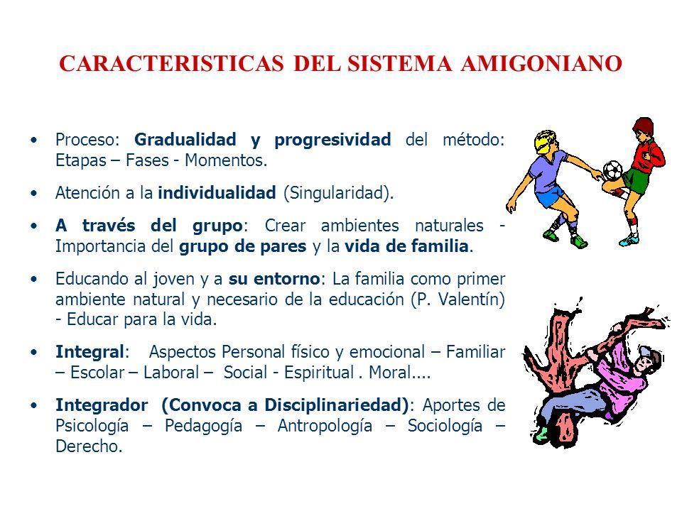CARACTERISTICAS DEL SISTEMA AMIGONIANO