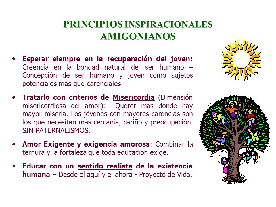 PRINCIPIOS INSPIRACIONALES AMIGONIANOS