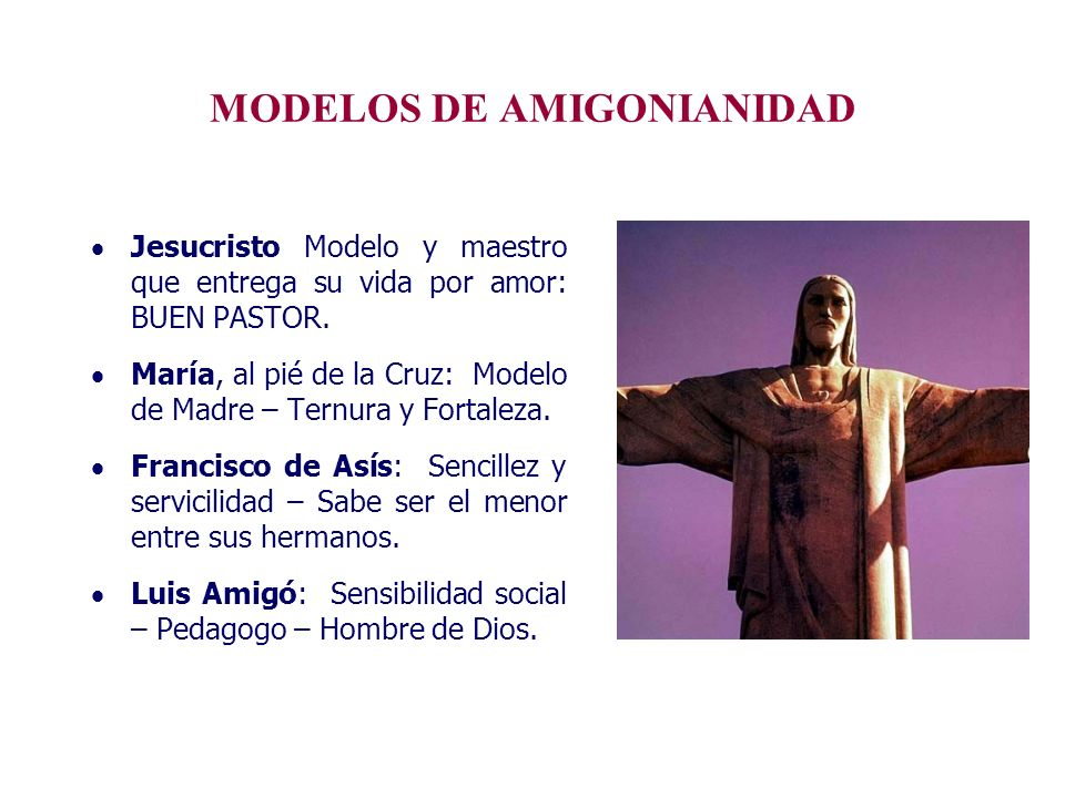 MODELOS DE AMIGONIANIDAD