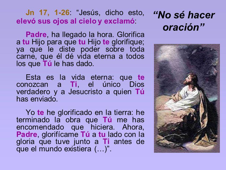 Jn 17, 1-26: Jesús, dicho esto, elevó sus ojos al cielo y exclamó: